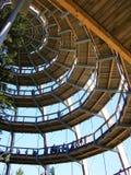 Spiral synvinkel för trä Arkivbild