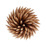 Spiral toothpicks Royalty Free Stock Image