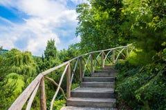 Spiral trappa till och med träden Royaltyfri Fotografi