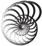 Spiral volute, snail shape, element. Rotating, twirling abstract Royalty Free Stock Photo