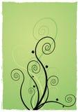 spirala roślin Obrazy Stock