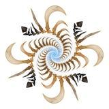spirale d'os Images libres de droits