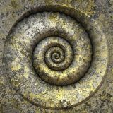 spirale de petrification image stock