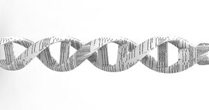 spirale del DNA 3d Fotografie Stock Libere da Diritti