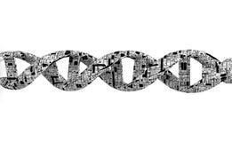 Spirale DNA-3d Lizenzfreies Stockbild