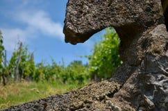 Spirale rocciosa Immagine Stock Libera da Diritti