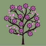 Spirale senza cuciture della decorazione dell'albero dell'ornamento del modello del fiore di bellezza di estate dell'estratto sen Fotografia Stock
