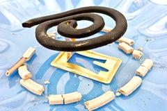 Spirale von Moskitos Lizenzfreie Stockfotografie