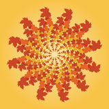 Spiralling fall leaves Stock Images
