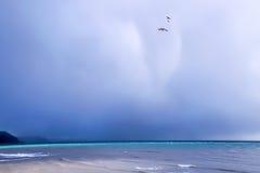 Spirit Of The Gull Stock Photo
