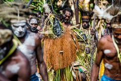 Spirit mask ceremony. YOUW VILLAGE, ATSY DISTRICT, ASMAT, NEW GUINEA, INDONESIA - MAY 23: The Village follows the ancestors embodied in spirit mask as they tour Royalty Free Stock Photo