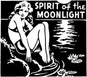 Spirit Of The Moonlight Stock Photography