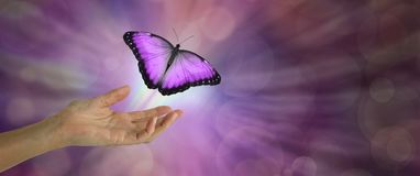 Spirit Release depicted by a magenta Butterfly taking flight