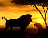 Spirito africano - i leoni Fotografia Stock