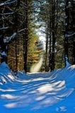 Spirito della neve Fotografia Stock