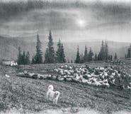 Spirito di antichità nelle montagne Fotografia Stock