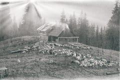 Spirito di antichità nelle montagne Immagini Stock