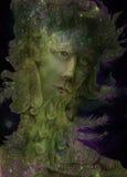 Spirito verde della natura - il profeta del vento con le piume, disegnanti Immagini Stock Libere da Diritti
