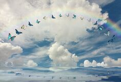 Spiritual and ecologic background with butterflies and rainbow