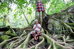 Spiritual man sits under the tree. Ubud, Bali, Indonesia. Indonesian  prayers often has meditation under crown of a Buddha tree Stock Image