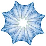 Spiritual snowflake Royalty Free Stock Photography