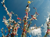 Spiritual Tree with Flags. Tibetan spiritual tree with flags on blue sky Stock Photography