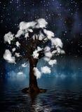 Spiritual Tree Royalty Free Stock Images