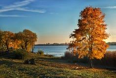 Spiritueux d'automne photo libre de droits