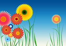 Spirograph inspired flowers Stock Photography