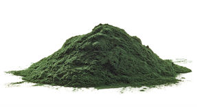 Spirulina海藻粉末 免版税库存图片