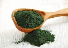 Free Spirulina Algae Powder Royalty Free Stock Photos - 48986378