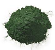 Spirulina algae powder Royalty Free Stock Photo