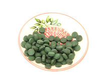Spirulina. In a bowl on a white background Stock Image
