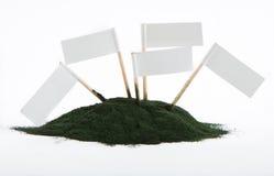 Spirulina powder algae isolated on white background - free space Royalty Free Stock Photo