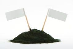Spirulina powder algae isolated on white background - free space Royalty Free Stock Photography