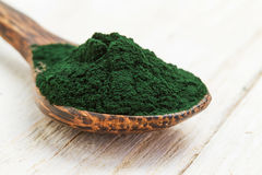 Spirulina powder Stock Photos