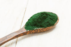 Spirulina powder Stock Images