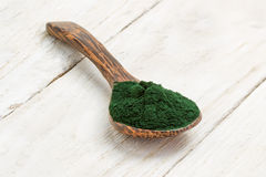 Spirulina powder Royalty Free Stock Images