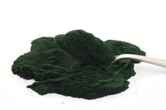 Spirulina powder Stock Image