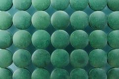 Spirulina Royalty Free Stock Image