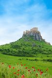 Spis Castle on the cliff. Spis Castle on the hill, with green grass and poppy field in Slovak republic royalty free stock images