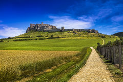 Spis Castle - the largest castle in Slovakia Stock Images