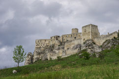 The Spis Castle - Spissky hrad National Cultural Monument (UNESCO) ruins of medieval castle, Slovakia. stock photography