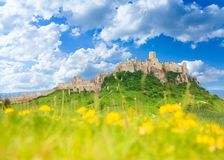 Spis castle at spring. Spis Castle on the hill on the North of Slovak republic with yellow wild flowers in the field on background royalty free stock image