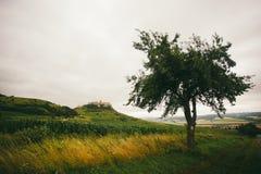 Spisske Podhradie Stadt und Spis ziehen sich Spissky-hrad, Presov-Region, Slowakei zurück Ansicht des Schlosses von der Straße, d stockbilder