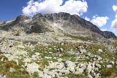 5 Spisskych plies  - tarns in High Tatras, Slovaki Stock Images