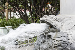 Spit the water dragon head Royalty Free Stock Photo