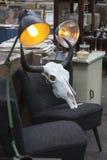 Spitalfields滑稽的市场 水牛头骨在老葡萄酒椅子 免版税库存照片