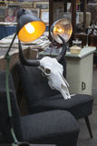 Spitalfields Antic Market. buffalo skull is on old vintage chair Royalty Free Stock Photo
