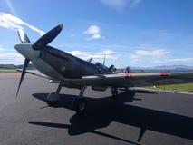 spitfire royalty-vrije stock afbeeldingen
